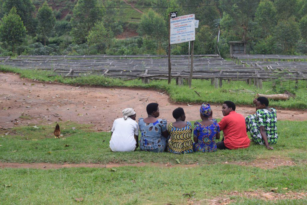 Rwanda Coffee Project