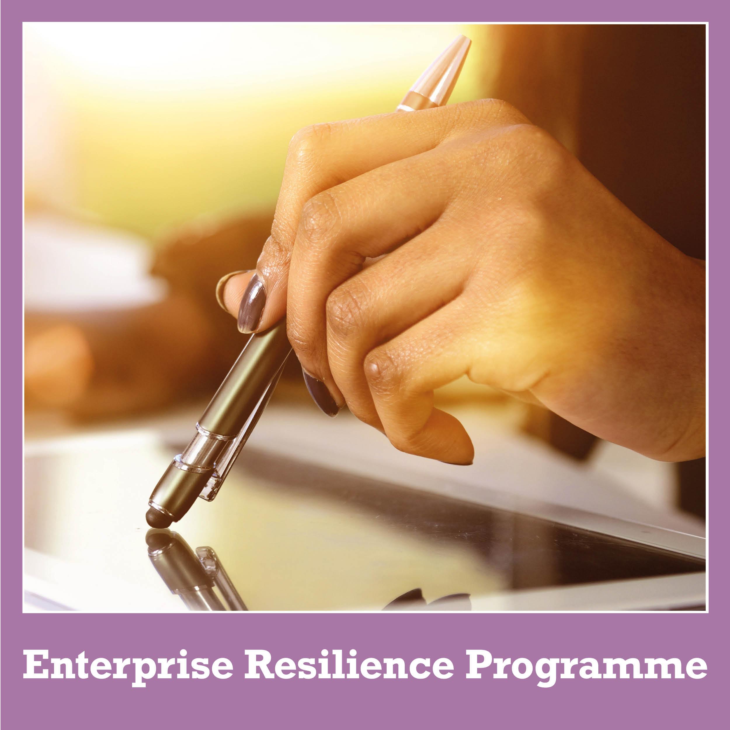 Enterprise Resilience Programme
